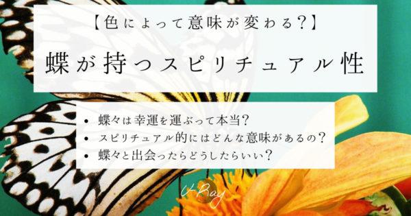 【色別】蝶々が持つスピリチュアルな意味は?アゲハは幸運の前兆?